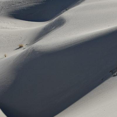 Dune Form I