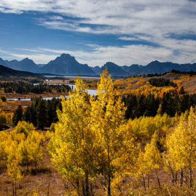 Autumn Color in the Tetons