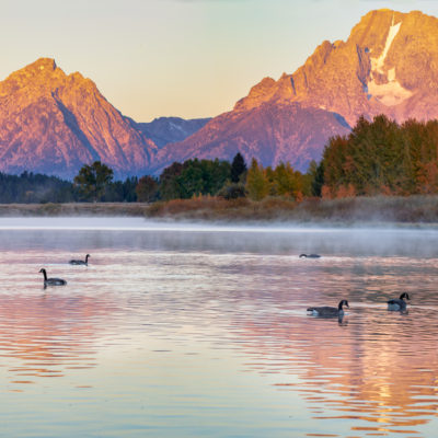 Mt. Moran Morning